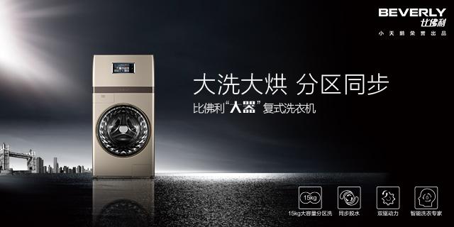 复式洗衣机 BVL1F150G6